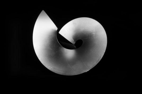 Spirali-Stampate-augers-division